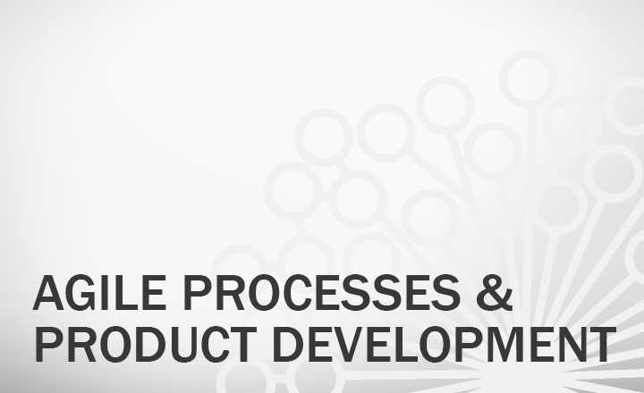 Agile Processes and Product Development