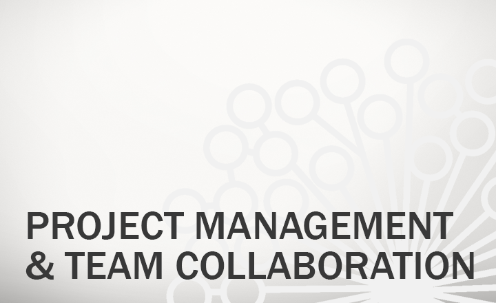 Project Management and Team Collaboration